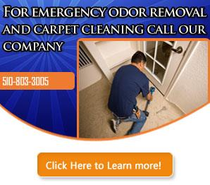 Water Damage - Carpet Cleaning Castro Valley, CA