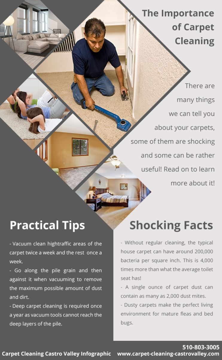 Carpet Cleaning Castro Valley Infographic
